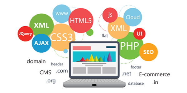 web-development-managed-solution